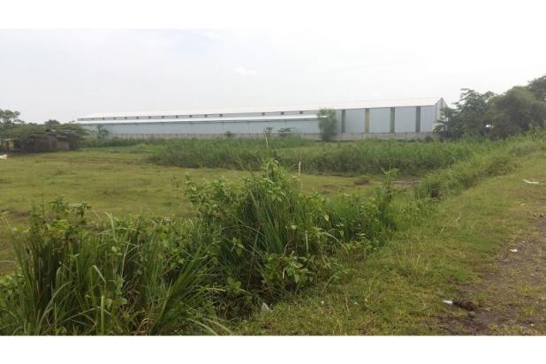 Rp266mily Tanah Dijual