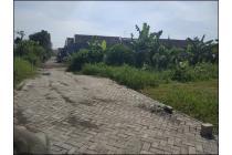 Tanah-Sidoarjo-4
