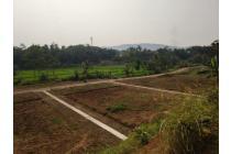 Komersial-Bogor-14
