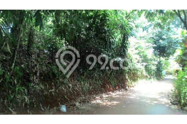 Dijual Tanah raga jaya citayam depok luas 1170mtr 600rb/mtr 17307526