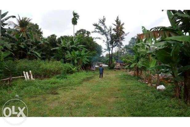 Tanah 2 Ha di peruntukkan buat Apartemen atau town house 10769599