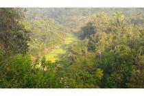 Tanah Subur - Pemandangan Gunung & Pedesaan