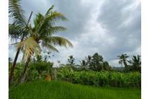 Tanah Riverside bagus untuk private Villa