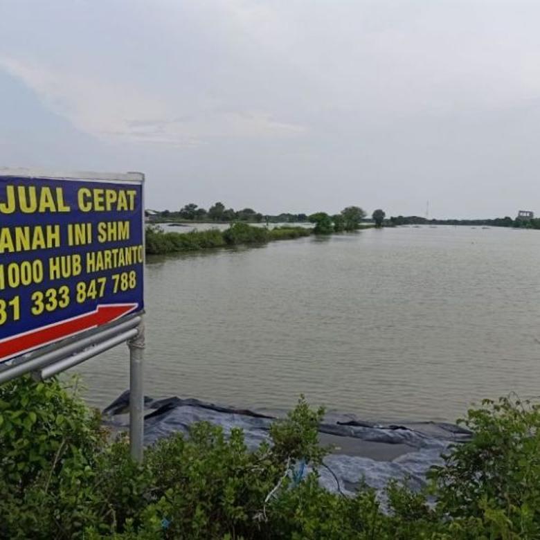 Jual Tanah 6 Hektar di Banjar Kemuning, Desa Sedati, Sidoarjo