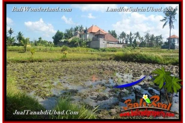 Strategis 12 are View Sawah link Villa 18273736