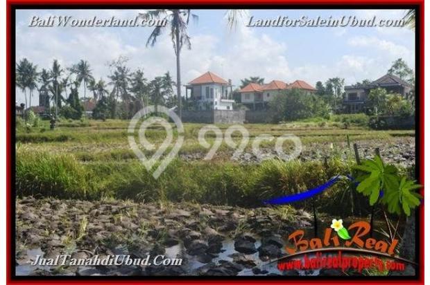 Strategis 12 are View Sawah link Villa 18273737