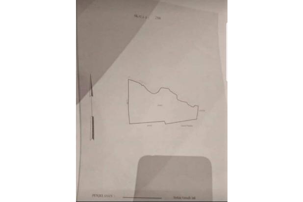 Rp244mily Tanah Dijual
