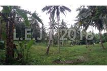 Dijual Tanah 35rb++ m2 Perkebunan dan Rumah di Tanawangko, Sulawesi Utara