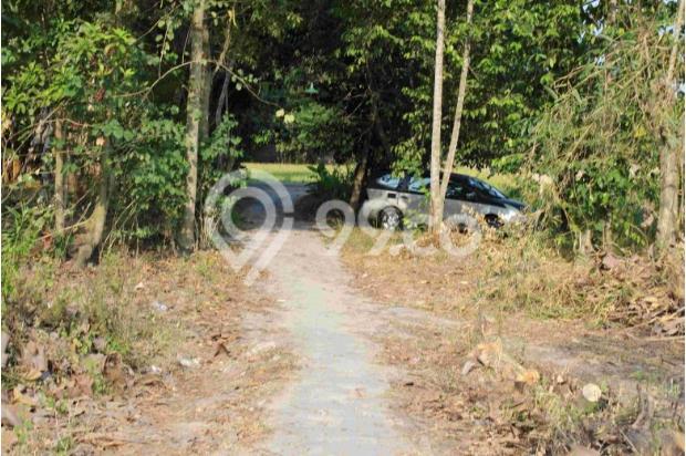 BEDA: Komersial Tanah Kaveling Standar Cluster Tinggi Timbang Tanah Biasa 12898019