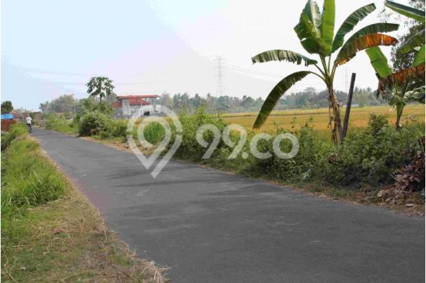 BEDA: Komersial Tanah Kaveling Standar Cluster Tinggi Timbang Tanah Biasa 12898023