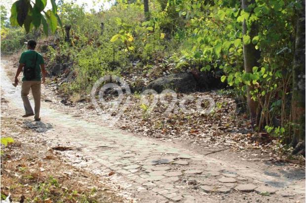 BEDA: Komersial Tanah Kaveling Standar Cluster Tinggi Timbang Tanah Biasa 12898029