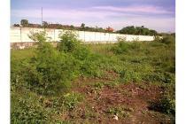Sewa Lahan Luas 54 Are Cocok Untuk Investasi di Lebaksari Petitenget