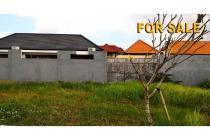 Tanah 1 are Untuk Villa di Umalas Lestari