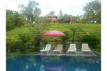 Hotel-Tabanan-7
