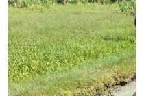 tanah bagi hasil aceh besar