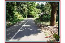 Prospek Investasi, 1.500 m2 Tanah  Tebing dan sungai besar di Ubud TJUB503
