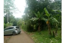 Jual Tanah Kebun Murah di Tegalwaru Plered Purwakarta