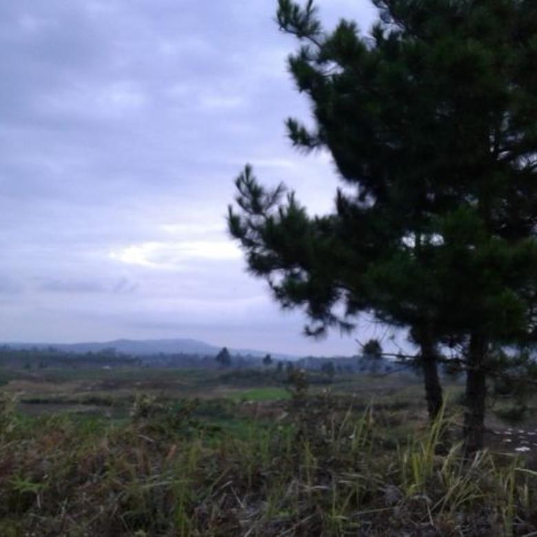 Tanah-Humbang Hasundutan-3