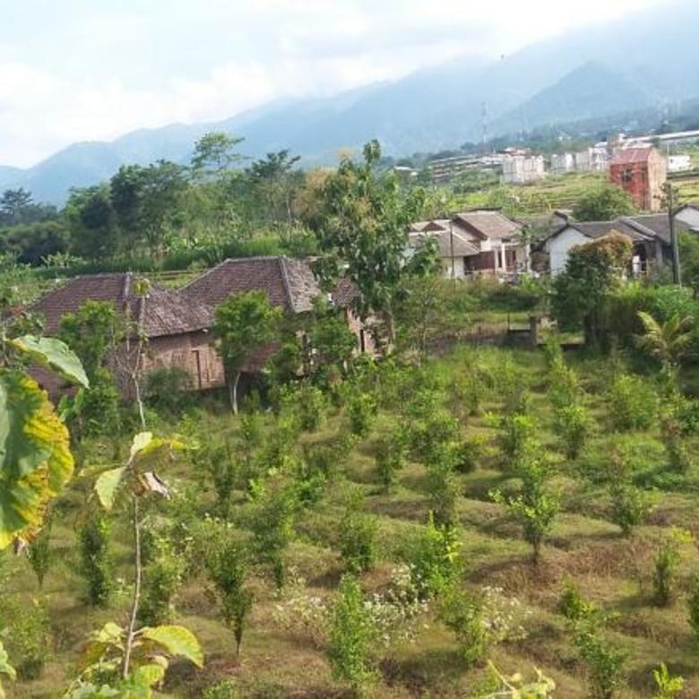 Tanah Jual Murah Puri Indah Batu Malang BNS