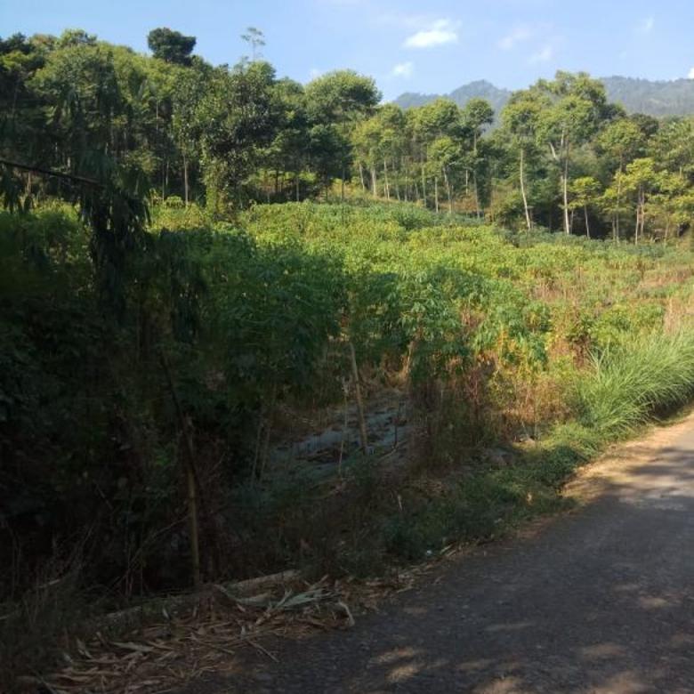 Jual tanah Murah cocok untuk Perumahan Subsidi