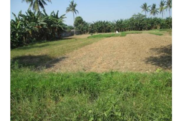 Rp14,2mily Tanah Dijual