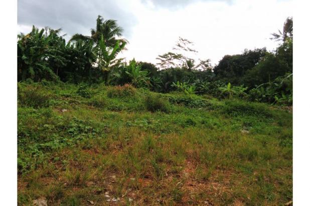 Rp51mily Tanah Dijual