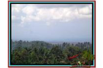 Strategis dan Prospektif 5.400 m2 View sawah dan laut di Tabanan TJTB153