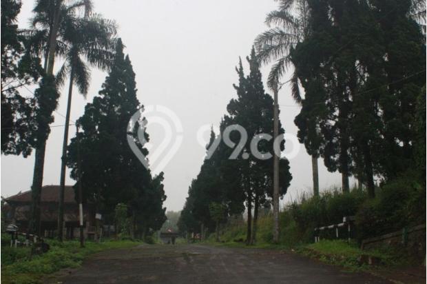 Investasi Kavling Villa Puncak Cipanas, Green Montana Village 16224540