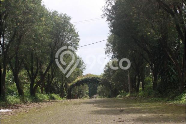 Investasi Kavling Villa Puncak Cipanas, Green Montana Village 16224541