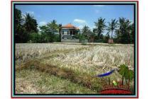 Prospektif Super Cantik Tanah 2.000 m2 Sentral di Ubud B524