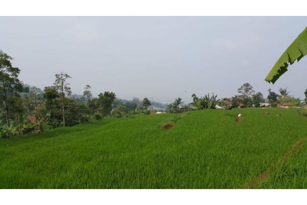 Rp1,14mily Tanah Dijual