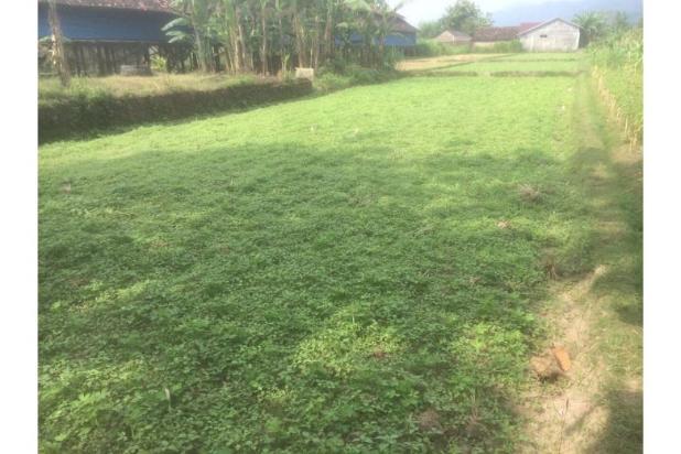 Tanah Dijual Bantul, Jual Tanah Dekat Jalan Piyungan Jogja KM 14 12272607