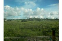 Tanah Murah