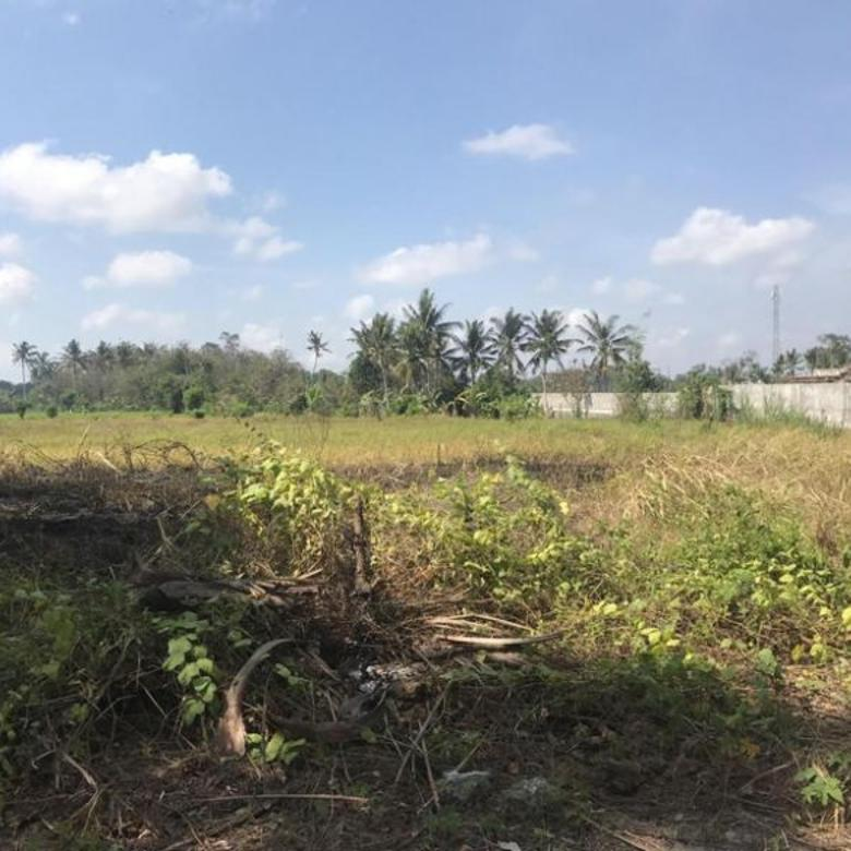 Tanah 5.5 Hektar di Ubud (Cocok untuk Resort)