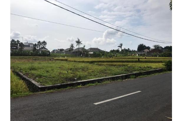 Rp4,87mily Tanah Dijual