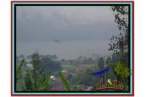Super Langka Murah Tanah 1.000 m2 di Tabanan Bedugul A181