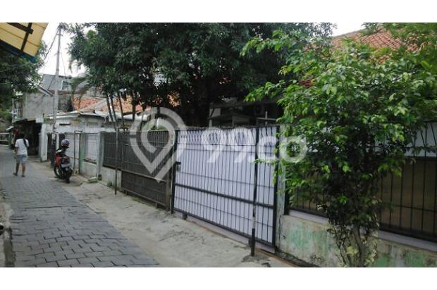 Rumah Kontrakan Murah Di Kalibaru Timur 5455573