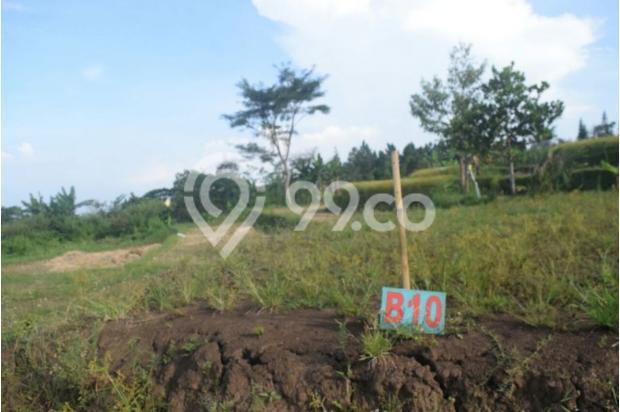 Tanah Kavling di Kota Batu Belakang BNS persis ! 17935533