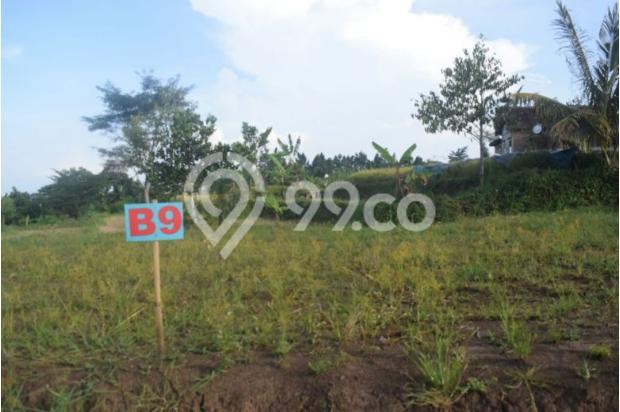 Tanah Kavling di Kota Batu Belakang BNS persis ! 17935539