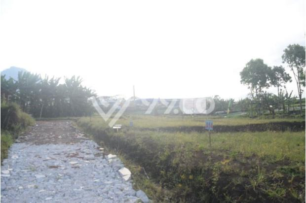 Tanah Kavling di Kota Batu Belakang BNS persis ! 17935545