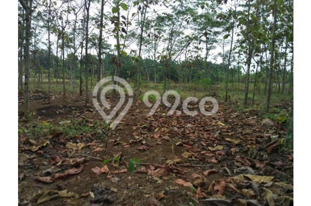DiJual Tanah Kavling Di Kab Bekasi Lokasi Strategis, Sertifikat SHM 13244058