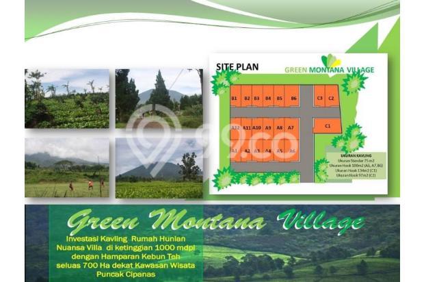Investasi Cerdas Tanah Kavling Murah Hanya 60 Jutaan/Kav di Puncak - shm 16224394