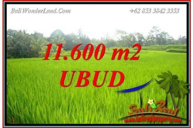 Rp21,4mily Tanah Dijual