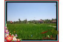Cozy 600 m2 Tanah  View sawah  di Sentral Ubud TJUB437