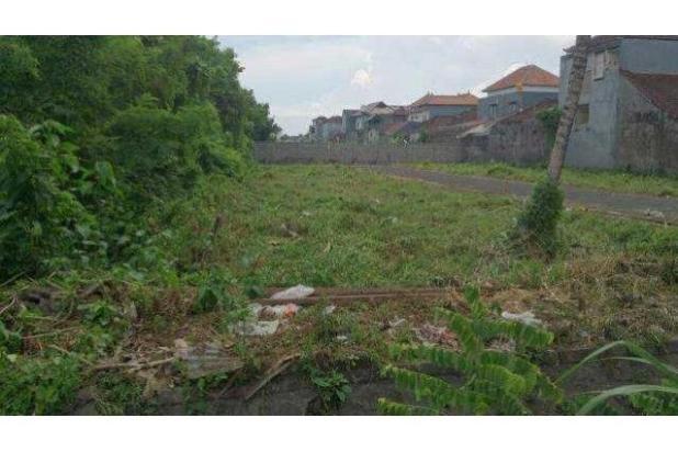 Dijual Tanah Kavling Strategis di Gurita Denpasar 12300153