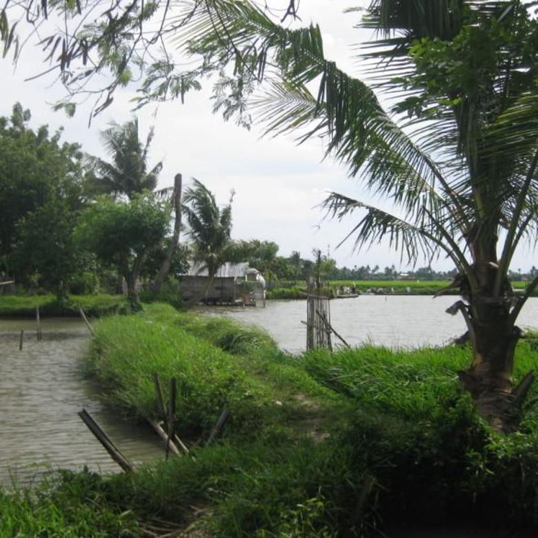 Tanah-Tangerang-3