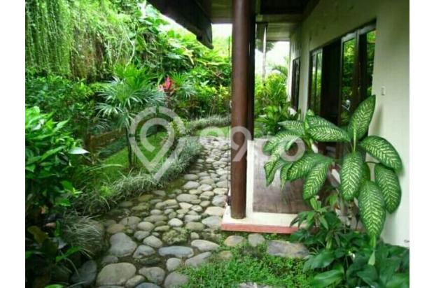 tanah bonus villa Canggu Berawa, dekat finns Beach, Batubelig 14417343