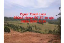Tanah Dijual Di Bogor Jasinga Koleang Murah