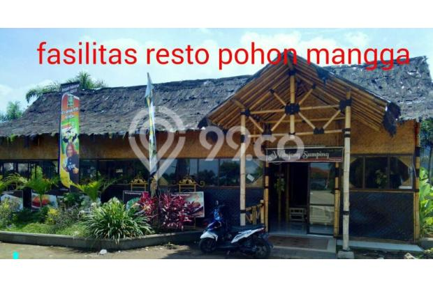 Rumah minimalis 1 1/2 lantai, hrg murah di Komplek Pohon Mangga Rancamanyar 17698150