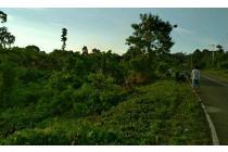 Tanah kawasan perkantoran gubernur papua barat